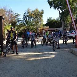 bicicletta (4)